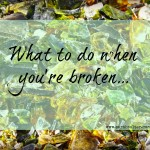 Heart Made Whole: What to Do When You're Broken